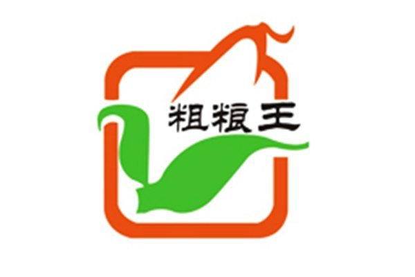 YingPai Electrical Technology CO., LTD partner --- The King of coarse