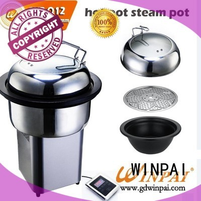 WINPAI safety single steamer for business for home