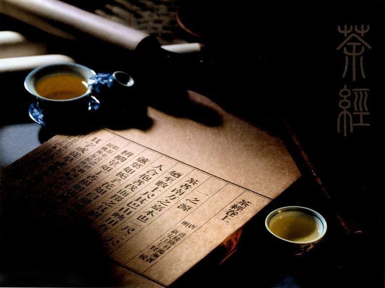 news-Talk about Yingpai tea-WINPAI-img