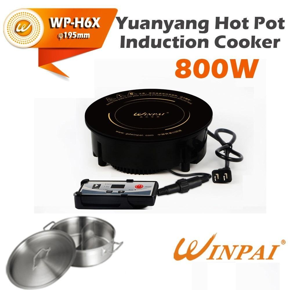 WINPAI sell induction offer price for villa
